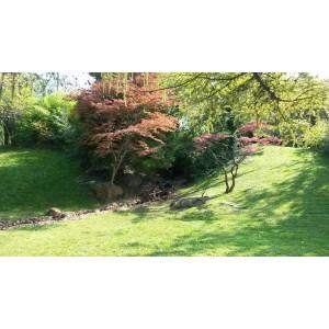 ハンガリー ブダペスト日本庭園