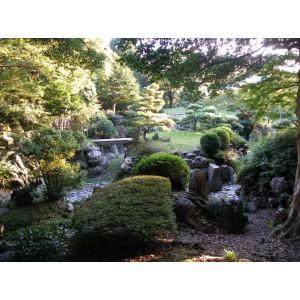 Japan in panorama